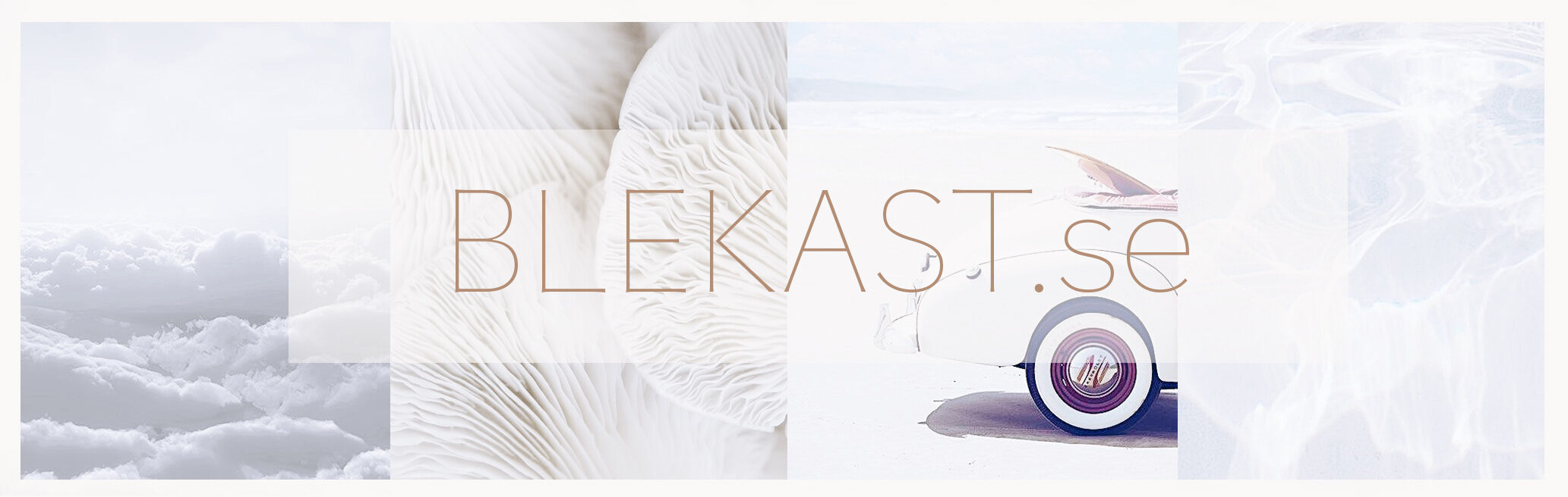 Logo for BLEKAST.se